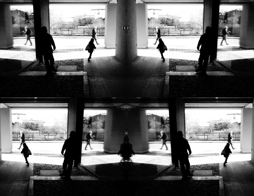 Skirvolja (monochrome reflections)