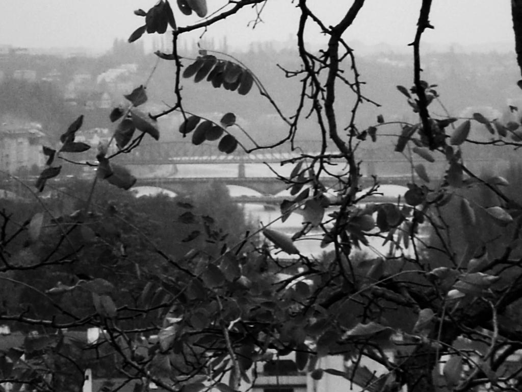 Vltava z Letné