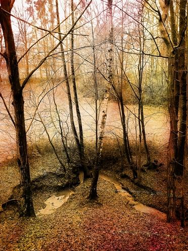 Podzimní výhled